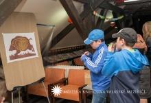 muzejni-noc-2015-09