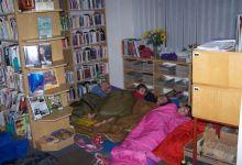andersen-2008_29