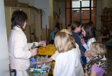 andersen-2008_31